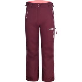 TROLLKIDS Hallingdal Pantalon Enfant, rouge